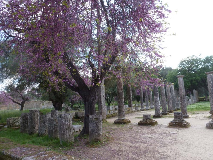GREECE - Ruins at Olympia