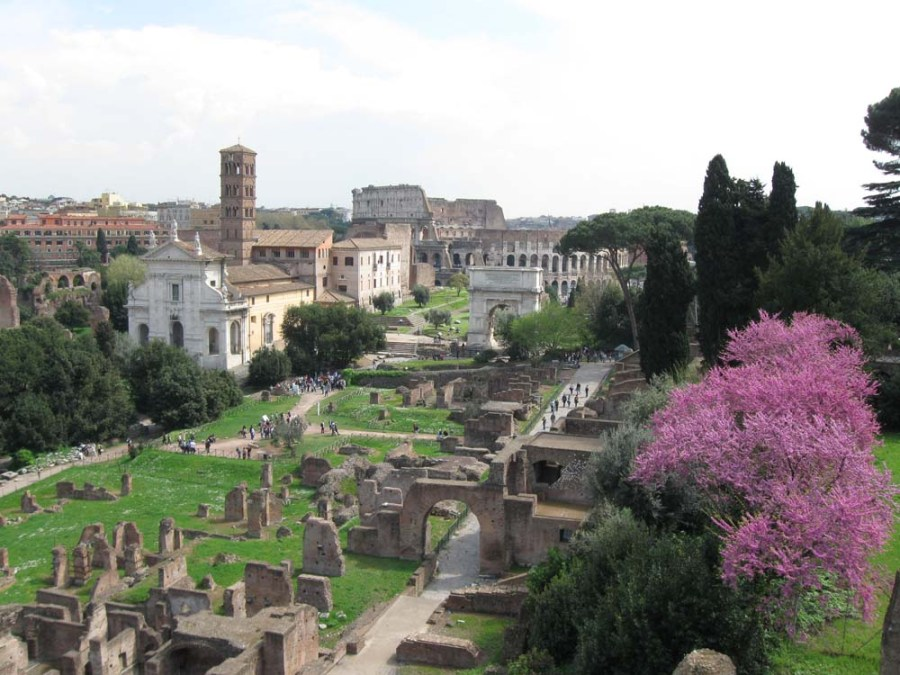 ITALY - Roman Forum and Coliseum