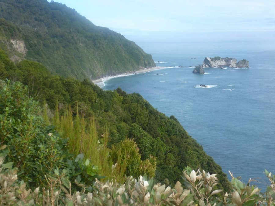 NEW ZEALAND - West coast near Haast